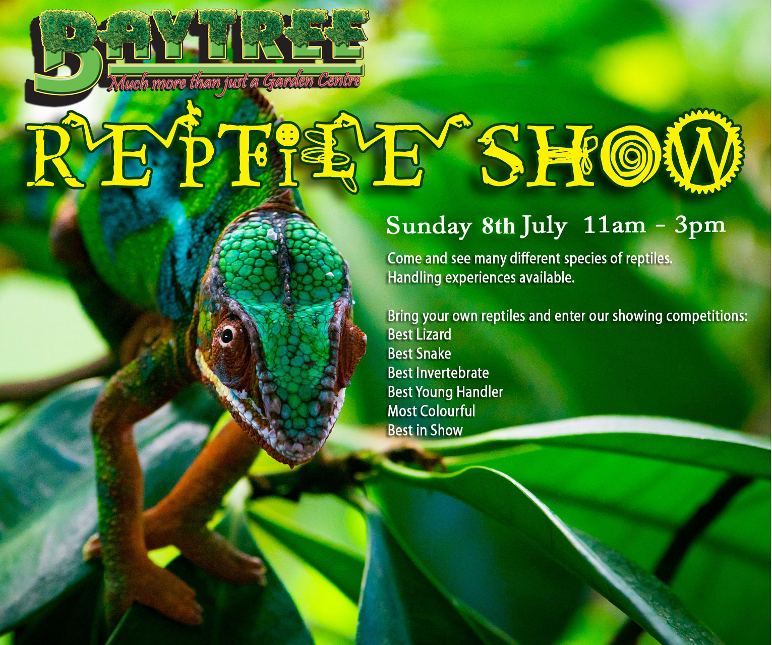 Baytree Pets Reptile Show